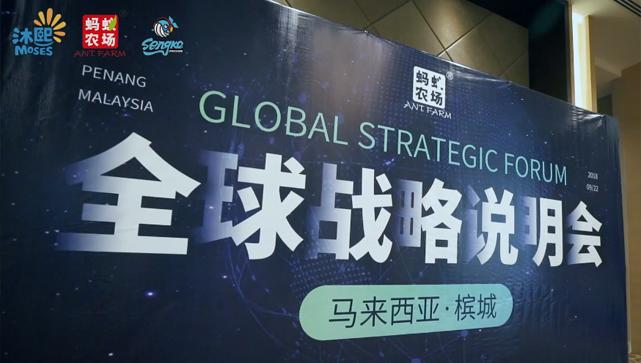 蚂蚁农场全球战略说明会